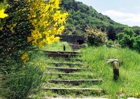 Gîtes d'étape Roche-Saint-Secret-Béconne