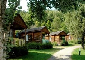 Au Bois de Calais- Chalet Arbre - Corrèze (Ville), Corrèze