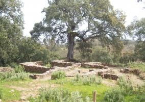 Gîtes Aracena