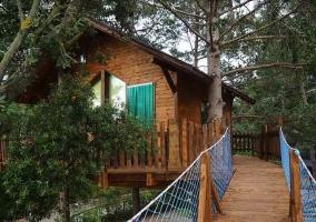 Casa del Árbol Alzina