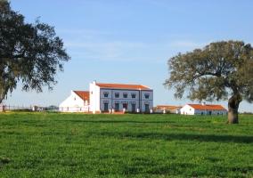 Finca Los Llanos- Casa de Los Señores