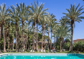 El Oasis Resort- Villas Standard