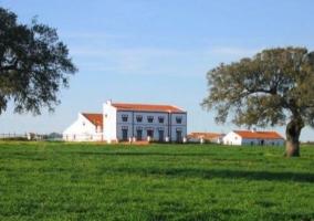 Finca Los Llanos- Casa La Mora