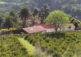 Casa Rural Finca Doñana