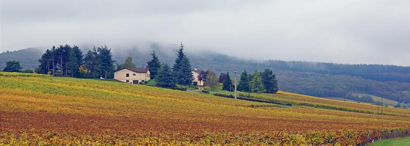 Bienvenue à Bourgogne
