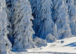 Gîtes pour ski